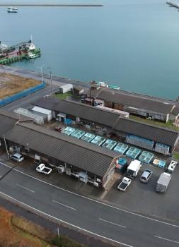 Sado-factory